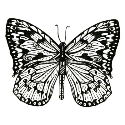 Greetings card butterfly black and white