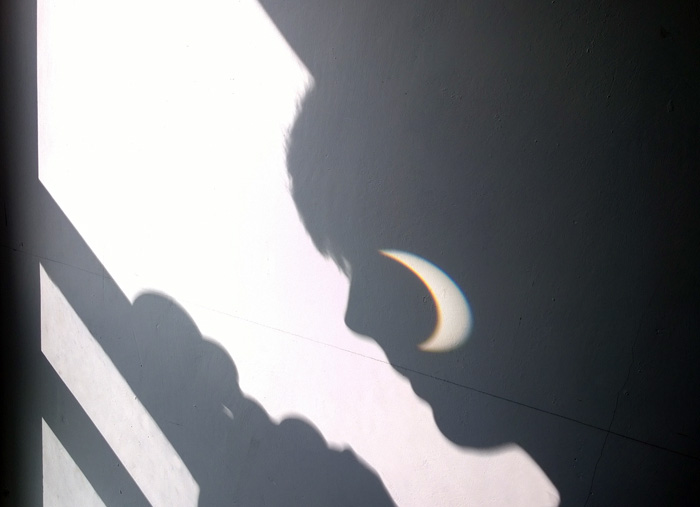 Eclipse 20th March 2015 face projection. © FL